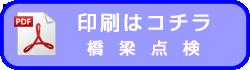 icon-pdf3